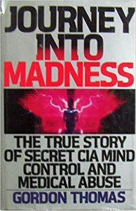 book cover Journey into madness